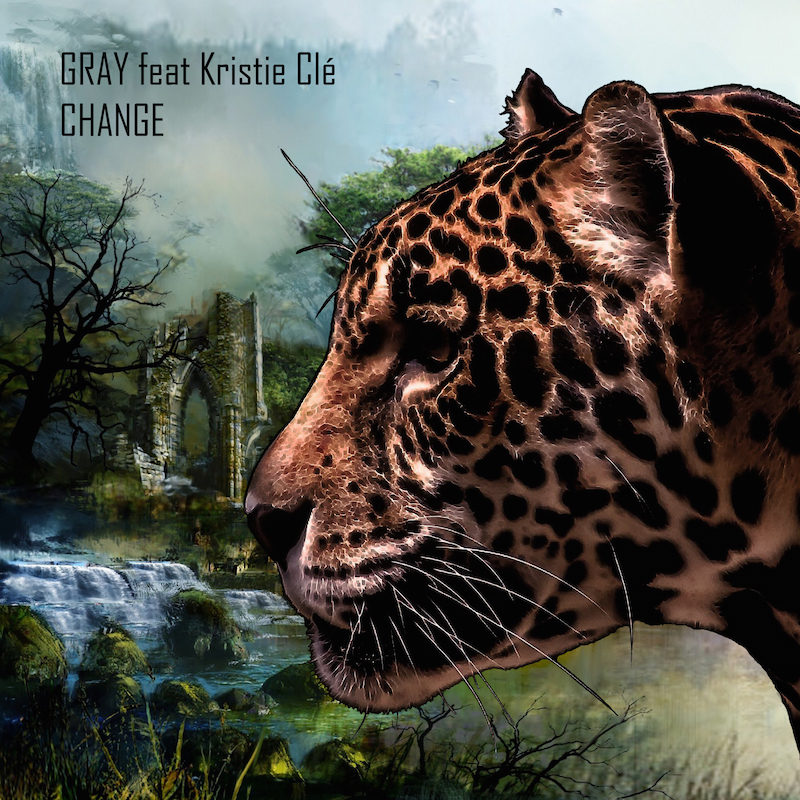 GRAY feat. Kristie Clé - Change (DSB053) - Deep Strips